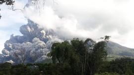 Erupsi Sinabung, Ribuan Hektare Lahan Pertanian Terdampak