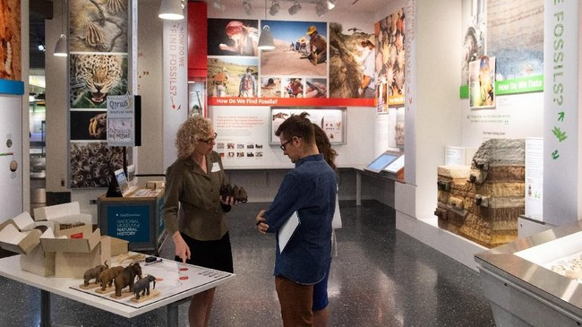 Ruang pameran 'National Fossil Hall' yang berisikan 700 fosil hewan purba, mulai dari dinosaurus sampai mamalia, di Smithsonian's National Museum of Natural History, Washington DC, Amerika Serikat.