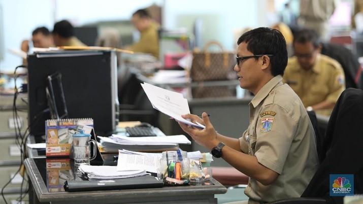 Pengumuman rekrutmen Calon Pegawai Negeri Sipil (CPNS) tahun 2019 akan diumumkan pada pekan keempat Oktober ini.