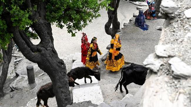 Setiap tahunnya, Kalash menyambut musim baru dengan berkurban, pembaptisan, dan pernikahan dalam sebuah festival bernama