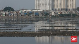 FOTO: Potret Pendangkalan Waduk Pluit Jakarta