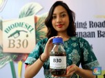 Biodiesel 30% Berlaku 2020, Berapa Devisa yang Dihemat?