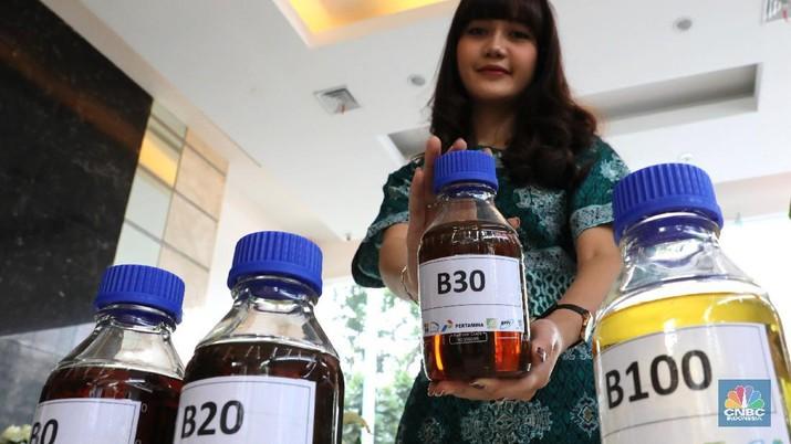 Launching Bahan Bakar B 30 (CNBC Indonesia/Muhammad Sabki)