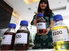 Tahun Depan Biodiesel B40 Dimulai, Pertamina Siap?