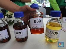 Penyerapan Biodiesel Domestik Baru Capai 58,5% Hingga Agustus