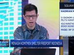 Reaksi Pasar Terhadap Realisasi Smelter Freeport
