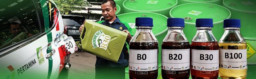 Menyongsong Kepastian Biodiesel B30