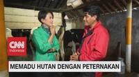 VIDEO: Memadu Hutan Dengan Peternakan (5-5)
