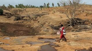 49 Orang di India Meninggal Dunia Karena Gelombang Panas