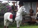 Sidang MK Selesai, Jokowi Bakal Temu 'Kangen' dengan Prabowo?