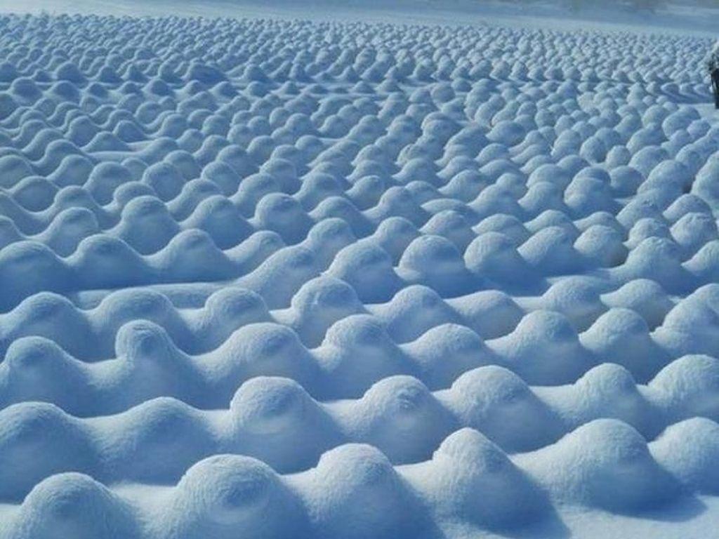 Panen es tahun ini telah melampaui harapan kami ... (Foto: Brightside)