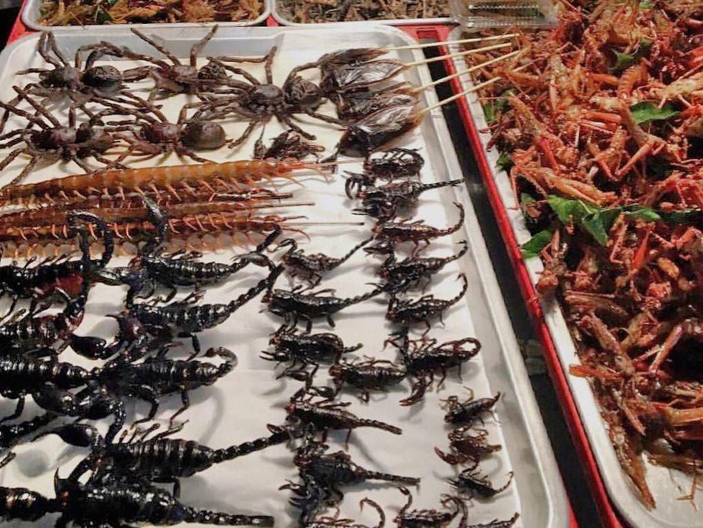 Kata Whulan, My kinda dinner tonight!! Want to join me? Makan malam. Ada yang berani makan kalajengking? Foto: Instagram whulandary