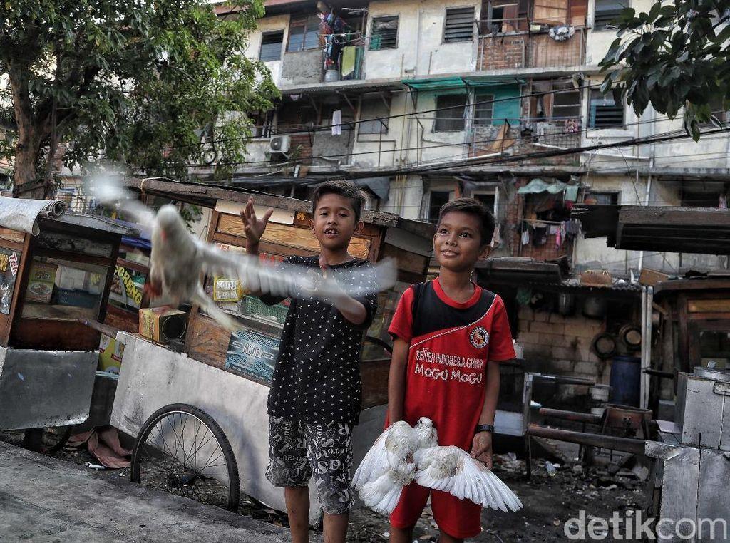 Pemprov DKI Jakarta akan merelokasi 4.160 warga di 978 unit Rusunawa Penjaringan.