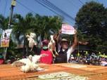 Nih, Penampakan Aksi Bagi-Bagi Ayam Gratis di Yogyakarta