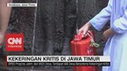 VIDEO: Kekeringan Kritis di Jawa Timur