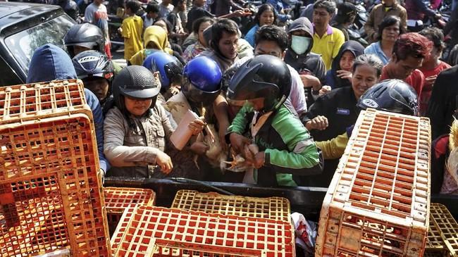Peternak melakukan aksi protes karena harga ayam di tingkat peternak anjlok menjadi hanya Rp8.000 per kilogram. (ANTARA FOTO/Andreas Fitri Atmoko).