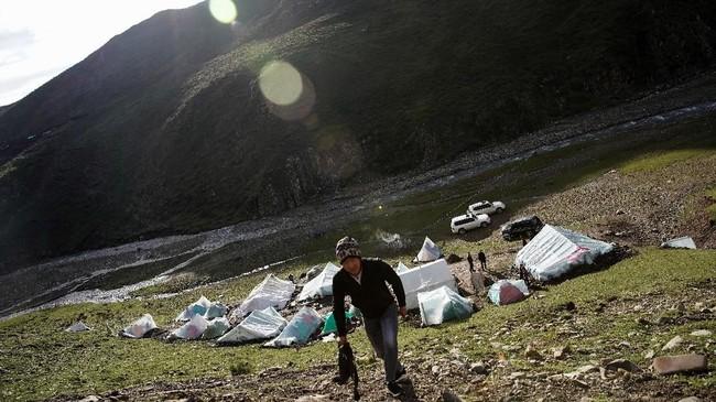 Bagi Ma Junxiao, seorang petani etnis Hui Muslim dari China bagian barat yang terpencil, memanjat lereng gunung yang curam untuk mencari jamur kecil sangatlah penting. (REUTERS/Aly Song)