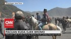 VIDEO: Pacuan Kuda Ojek Bromo