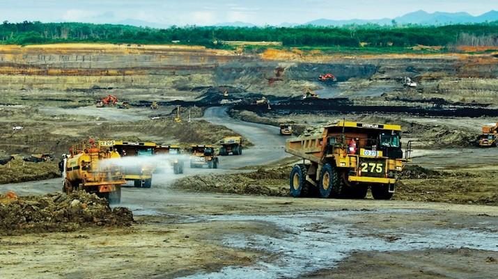 Koreksi harga batu bara di tingkat global cukup mempengaruhi pergerakan saham emiten tambang batu bara di bursa saham dalam negeri.