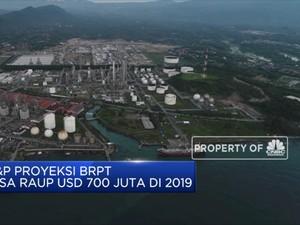 S&P Proyeksi BRPT Bisa Raup USD 700 Juta di 2019