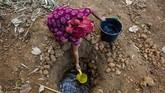 Seorang warga mengambil air dari sumur buatan di Desa Parungmulya, Ciampel, Karawang, 2 Juli 2019. Akibat musim kemarau sebagian warga di wilayah itu terpaksa membuat sumur buatan untuk melakukan aktivitas Mandi Cuci Kakus (MCK) karena sumber air di rumah mereka mengalami kekeringan. (ANTARA FOTO/M Ibnu Chazar)