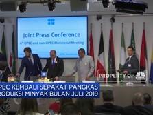 OPEC Kembali Pangkas Produksi Minyak di Juli 2019