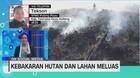 VIDEO: Kebakaran Hutan dan Lahan Meluas