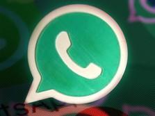 Tak Mau WhatsApp Dibajak & Dicuri? Jangan Lakukan Hal Ini!