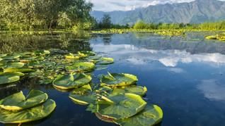 'Digerayangi' India, Kashmir Berharap Tak Dilupakan Turis
