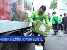 Kementerian ESDM Naikkan HIP Biodiesel
