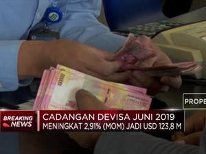 Cadev Juni 2019 Meningkat Jadi USD 123,8 M