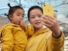 Pertama Kali Dalam 7 Tahun, Kontribusi iPhone ke Apple Susut