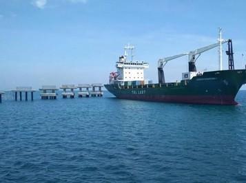Omnibus Law: Tsunami bagi Pengusaha Pelayaran Nasional