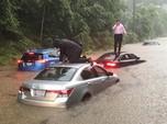 Begini Kondisi Banjir Bandang yang Melanda Washington