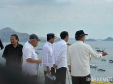 Jokowi Mau Turis ke Pulau Komodo Bayar Lebih Mahal & Terbatas