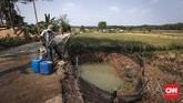 Ujang, warga Cibarusah mengambil air dari kolam penampungan air yang dibuat warga secara swadaya di Desa Sirna Jati, Cibarusah, Kabupaten Bekasi, Jawa Barat, Rabu (10/7). (CNNIndonesia/Safir Makki)