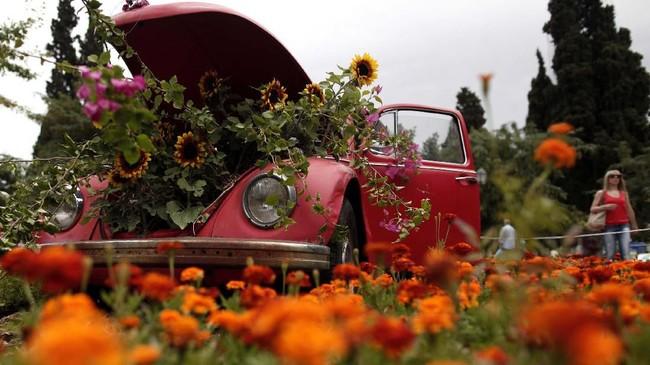 Volkswagen Beetle klasik dikelilingi oleh bunga-bunga di pusat Syntagma Square di Athena. (AP Photo/Petros Giannakouris)
