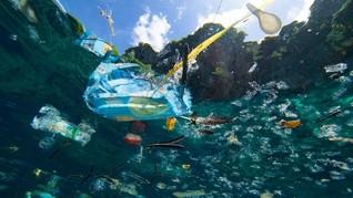 Pria Papua Nugini Tewas Usai Makan Ikan Tercemar Limbah Nikel