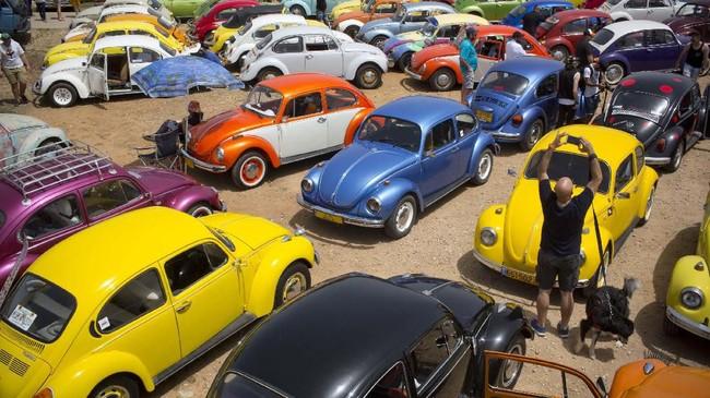 Kumpulan penggemar Volkswagen Beetles di acara tahunan