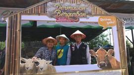 Global Qurban-ACT Bakal Gelar 'Farm Tour' di Blora