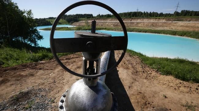 Pipa pembuangan limbah beracun di tepi danau.(Photo by Rostislav NETISOV / AFP)