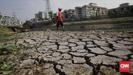 Musim Kemarau, Jakarta Utara Tak Turun Hujan 60 Hari Lebih