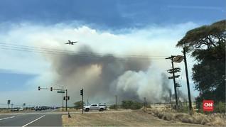 VIDEO: Kebakaran Lahan di Pulau Maui Picu Asap Tebal