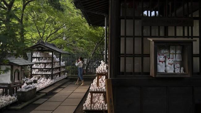 Setiap daerah di Jepang memiliki kuil lokal dengan patung manekineko di dalamnya, tapi jumlahnya tidak sebanyak patung manekineko yang ada di Kuil Gotokuji.