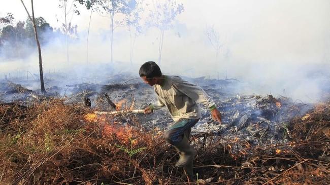 Sulitnya mendapatkan sumber air di sekitar lokasi kebakaran karena beberapa desa di daerah ini mengalami kekeringan menjadi kendalabagipetugasuntuk memadamkan api. (ANTARA FOTO/Syifa Yulinnas)