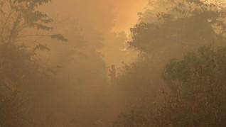FOTO : Kebakaran Lahan di Aceh Barat Meluas