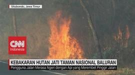 VIDEO: Kebakaran Hutan Jati Taman Nasional Baluran