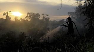 Kebakaran Hutan dan Lahan Kepung Ibu Kota Baru