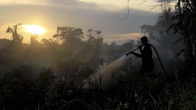 Kebakaran lahan di Kabupaten Aceh Baratselamasatu pekan terakhir semakin meluas.Lebih dari 50 hektare lahan terbakar dan sampai saat ini masih sulit diatasi karena banyaknya lokasi kebakaran lahan yang muncul akibat musim kemarau. (ANTARA FOTO/Syifa Yulinnas)