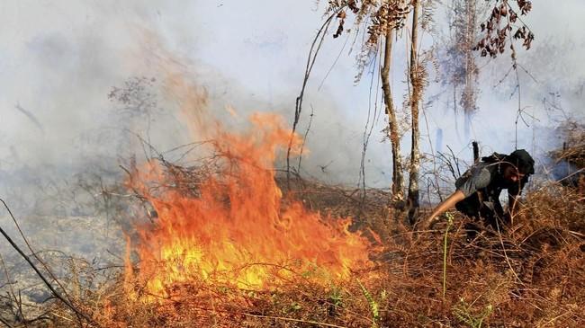 Sebaran kebakaran lahan diAceh,kini sudah mencapai empat kecamatan, meliputi Arongan Lambalek, Woyla Barat, Meureubo, serta Kecamatan Johan Pahlawan. (ANTARA FOTO/Syifa Yulinnas)